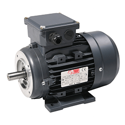Single and Three Phase Electric Motors